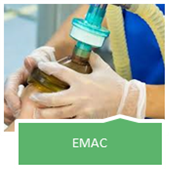 EMAC course link